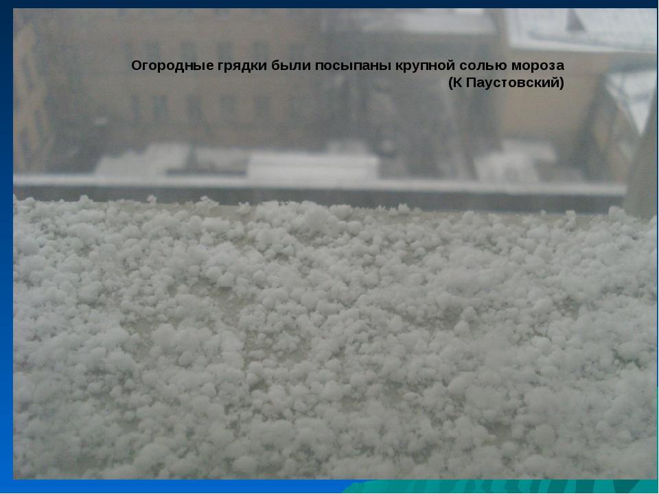 Огородные грядки были посыпаны крупной солью мороза (К Паустовский)
