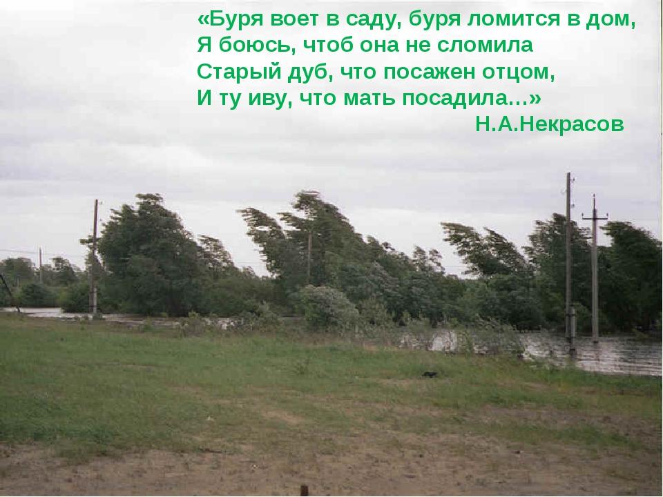 «Буря воет в саду, буря ломится в дом, Я боюсь, чтоб она не сломила Старый ду...