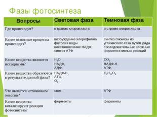 Фазы фотосинтеза ВопросыСветовая фазаТемновая фаза Где происходит?в гранах