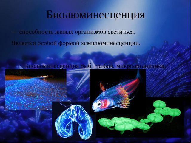 Биолюминесценция — способность живых организмов светиться. Является особой фо...