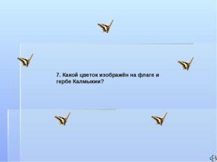 7. Какой цветок изображён на флаге и гербе Калмыкии?