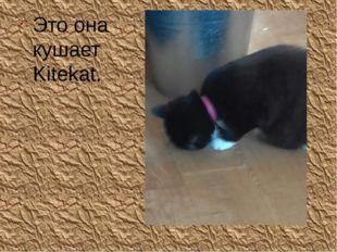 Это она кушает Kitekat.