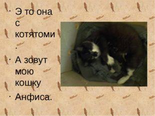 Э то она с котятоми. А зовут мою кошку Анфиса.