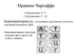 Правило Чаргаффа Содержание А=Т Содержание Г= Ц Комплиментарность - это взаим