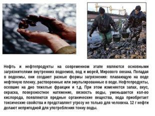 Нефть и нефтепродукты на современном этапе являются основными загрязнителями