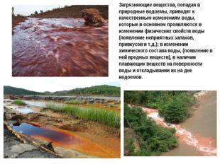Загрязняющие вещества, попадая в природные водоемы, приводят к качественным и