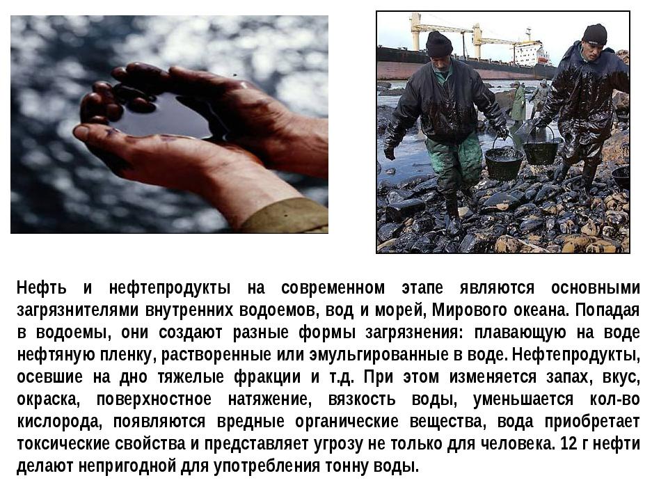 Нефть и нефтепродукты на современном этапе являются основными загрязнителями...