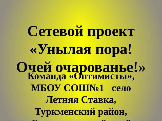 Сетевой проект «Унылая пора! Очей очарованье!» Команда «Оптимисты», МБОУ СОШ№...