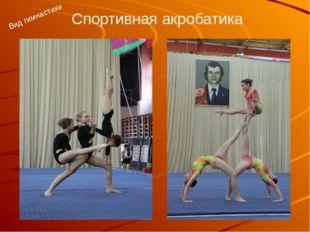 Спортивная акробатика Вид гимнастики