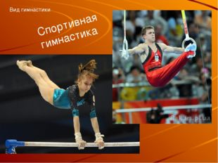 Спортивная гимнастика Вид гимнастики