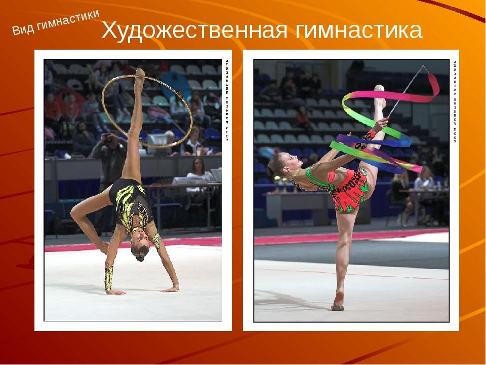 Художественная гимнастика Вид гимнастики