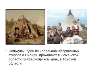 Селькупы- один из небольших аборигенных этносов в Сибири, проживают в Тюменс