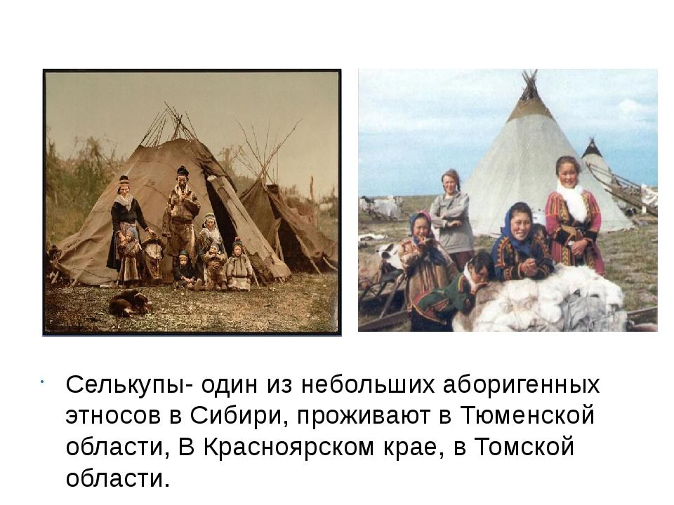 Селькупы- один из небольших аборигенных этносов в Сибири, проживают в Тюменс...