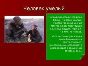 Человек умелый Первый представитель рода Homo – Человек умелый. Назван так из