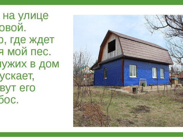 Дом на улице Садовой. Двор, где ждет меня мой пес. Он чужих в дом не пускает,...
