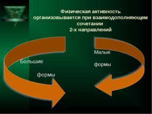 Физическая активность организовывается при взаимодополняющем сочетании 2-х на