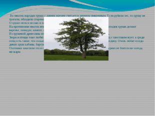 Во многих народов груша с давних времен считается деревом священным. Если ру