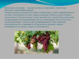 Виногра́д культу́рный—видмноголетнихкустарниковыхлианиз родаВиноградс
