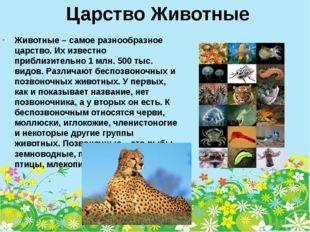 Царство Животные Животные – самое разнообразное царство. Их известно приблизи