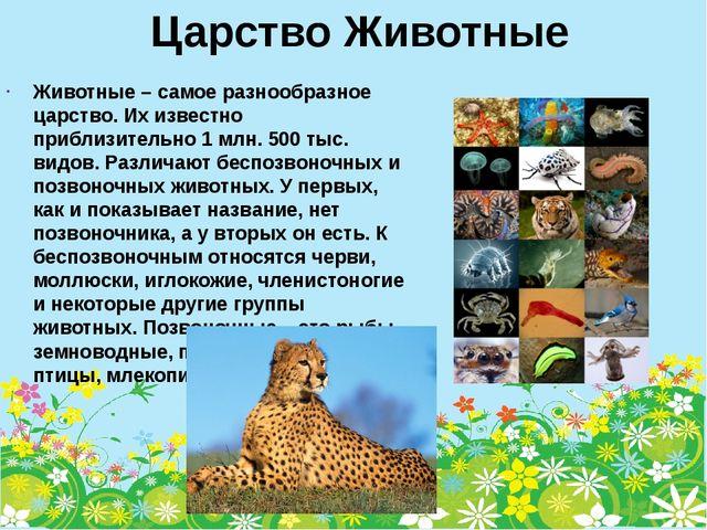 Царство Животные Животные – самое разнообразное царство. Их известно приблизи...