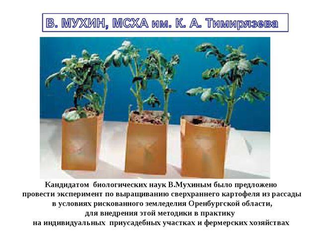 Кандидатом биологических наук В.Мухиным было предложено провести эксперимент...