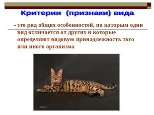 - это ряд общих особенностей, по которым один вид отличается от других и кот