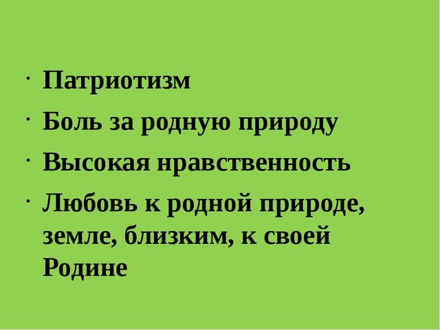 Патриотизм Боль за родную природу Высокая нравственность Любовь к родной при...