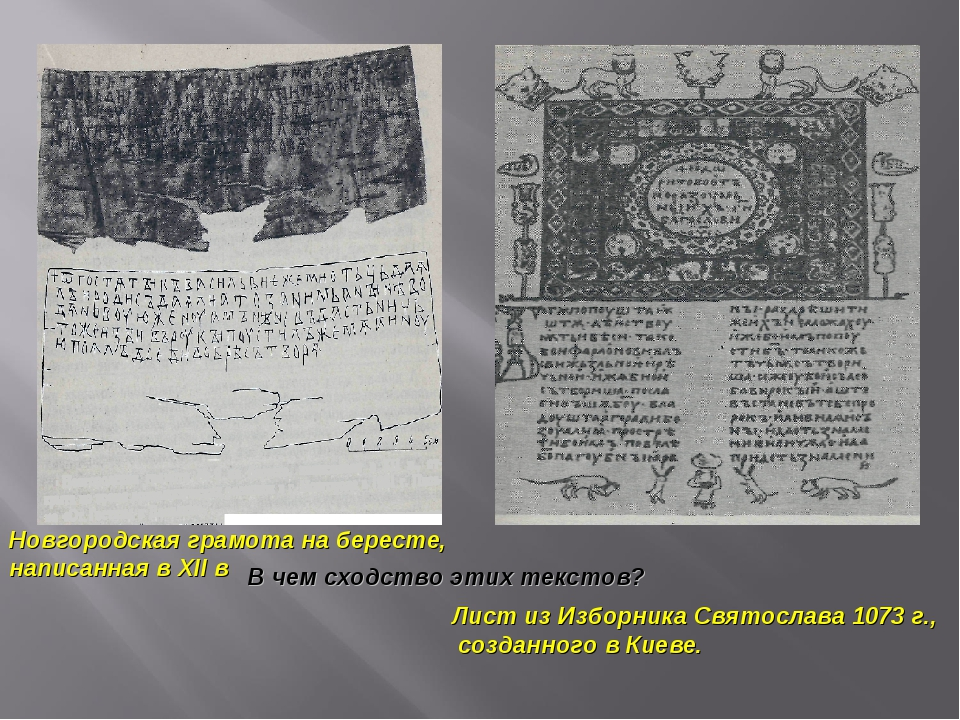Новгородская грамота на бересте, написанная в XII в Лист из Изборника Святосл...