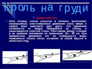 Движения ног. Ноги пловца, слегка согнутые в коленях, выполняют непрерывные,
