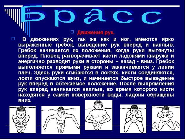 Движения рук. В движениях рук, так же как и ног, имеются ярко выраженные греб...
