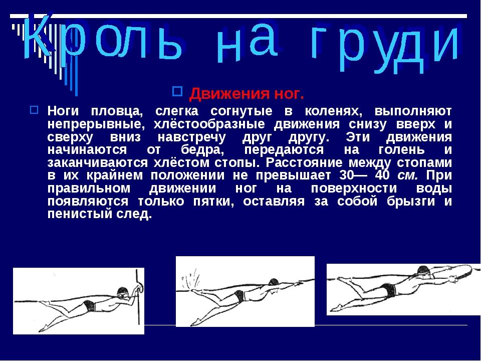Движения ног. Ноги пловца, слегка согнутые в коленях, выполняют непрерывные,...
