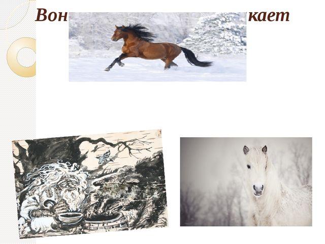 Вон - теперь в овраг толкает Одичалого коня;