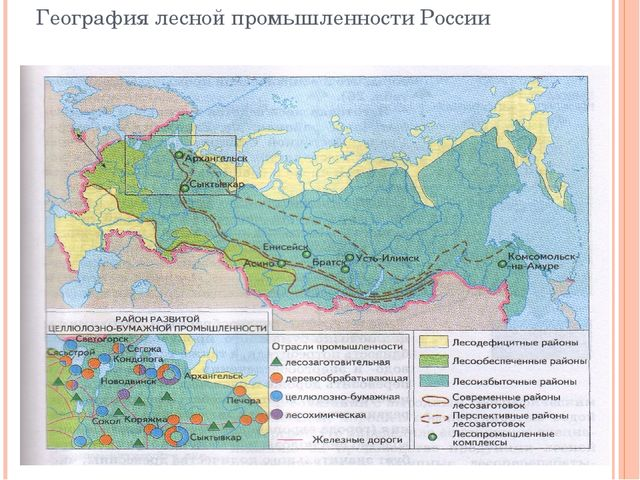 География лесной промышленности России