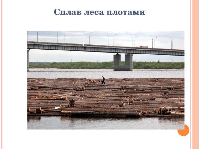 Сплав леса плотами