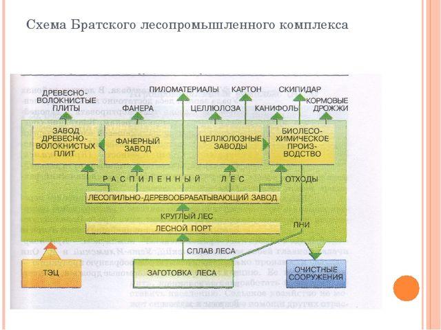 Схема Братского лесопромышленного комплекса
