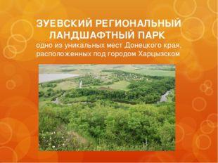 ЗУЕВСКИЙ РЕГИОНАЛЬНЫЙ ЛАНДШАФТНЫЙ ПАРК одно из уникальных мест Донецкого края