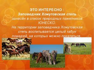 ЭТО ИНТЕРЕСНО : Заповедник Хомутовская степь занесён в список природных памят