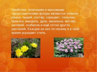 Наиболее типичными и массовыми представителями флоры являются: ковыли, кашка,