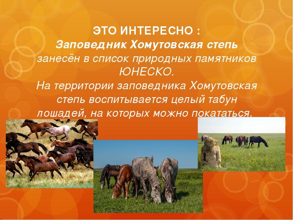 ЭТО ИНТЕРЕСНО : Заповедник Хомутовская степь занесён в список природных памят...