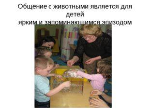 Общение с животными является для детей ярким и запоминающимся эпизодом