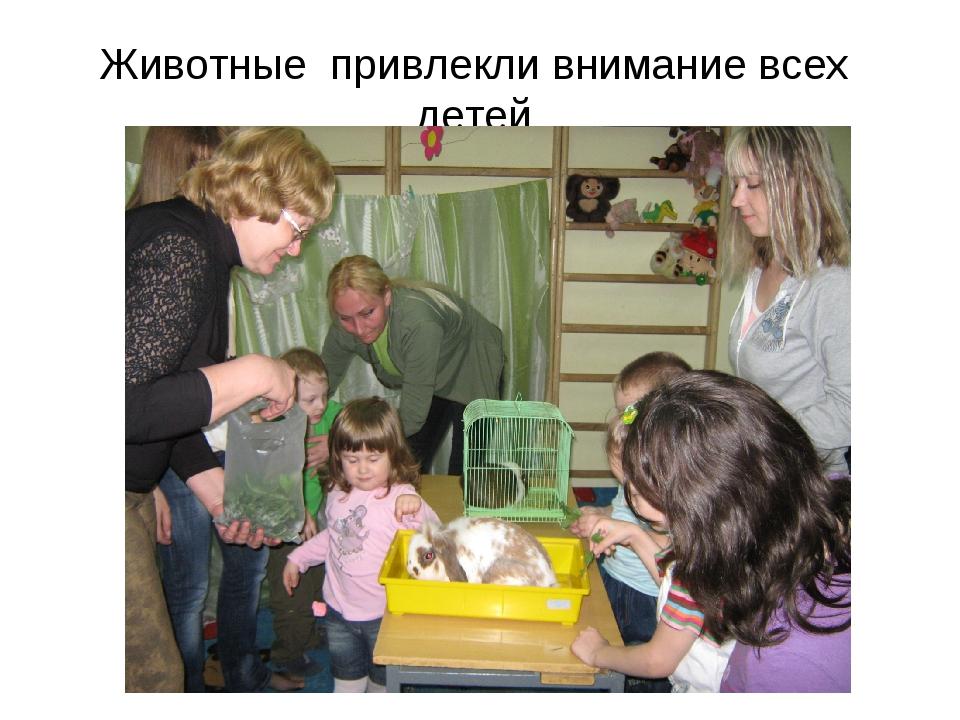 Животные привлекли внимание всех детей