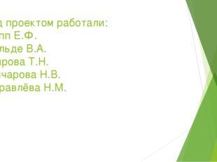 Над проектом работали: Лепп Е.Ф. Фельде В.А. Боярова Т.Н. Гончарова Н.В. Жура