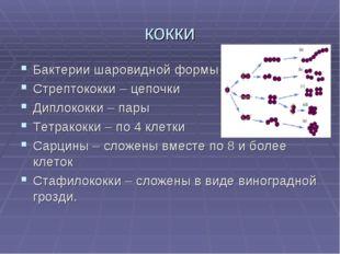 кокки Бактерии шаровидной формы Стрептококки – цепочки Диплококки – пары Тетр