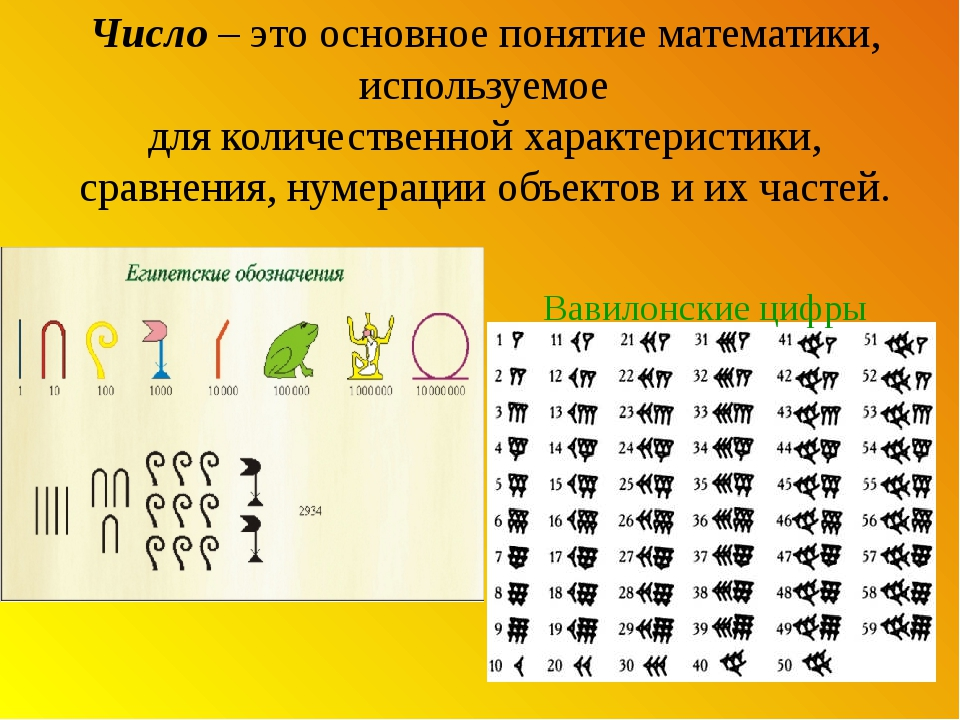 Число – это основное понятиематематики, используемое дляколичественнойхара...
