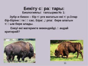 Бекіту сұрақтары: Биологиялық тапсырма № 1: Зубр и бизон – бір түрге жататын