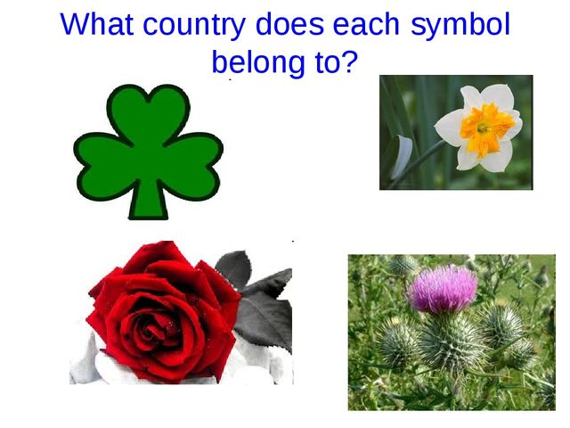 What country does each symbol belong to?