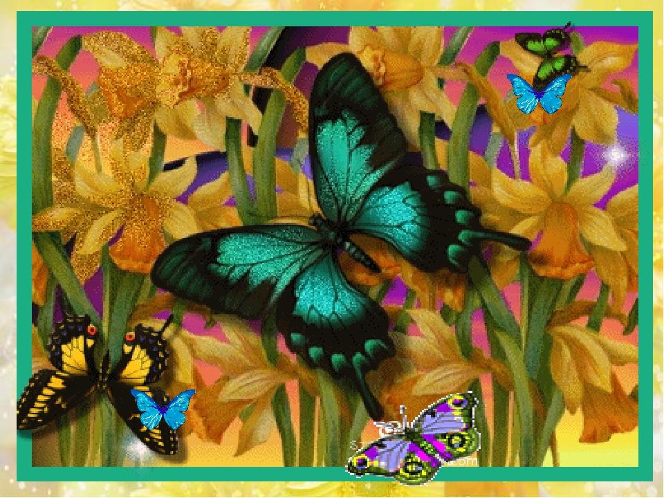 Живые бабочки к поздравлению