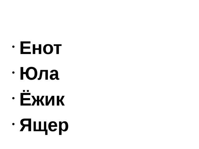 Енот Юла Ёжик Ящер