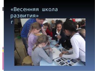 «Весенняя школа развития» г.Новосибирск