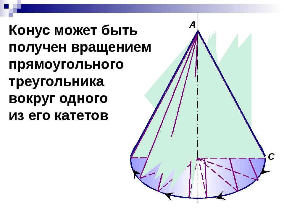 А В С Конус может быть получен вращением прямоугольного треугольника вокруг...